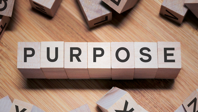 Our Purpose.